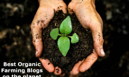 Top 25 Organic Farming Blogs and Websites | Organic Farming Websites