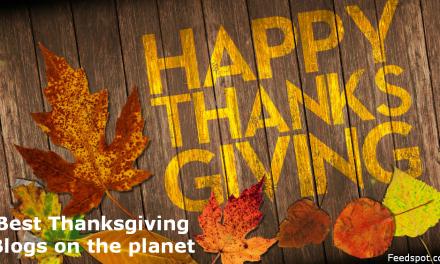 Top 10 Thanksgiving Blog List (Ranked)