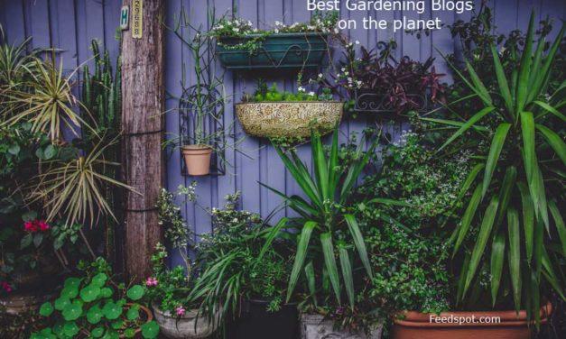 Top 100 Gardening Blogs & Websites For Gardeners in 2019