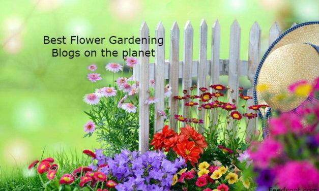 Top 30 Flower Gardening Blogs And Websites For Flower Gardeners