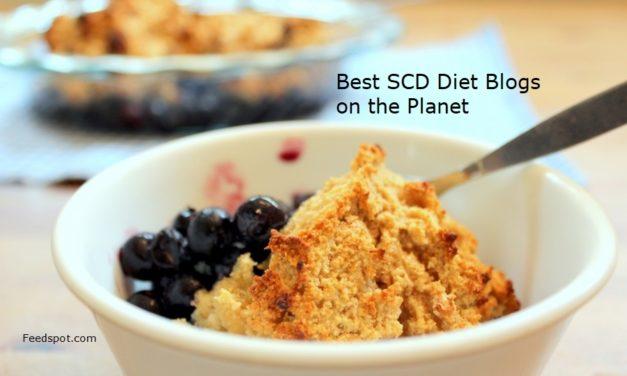 Top 15 SCD Diet Blogs And Websites For IBD Patients