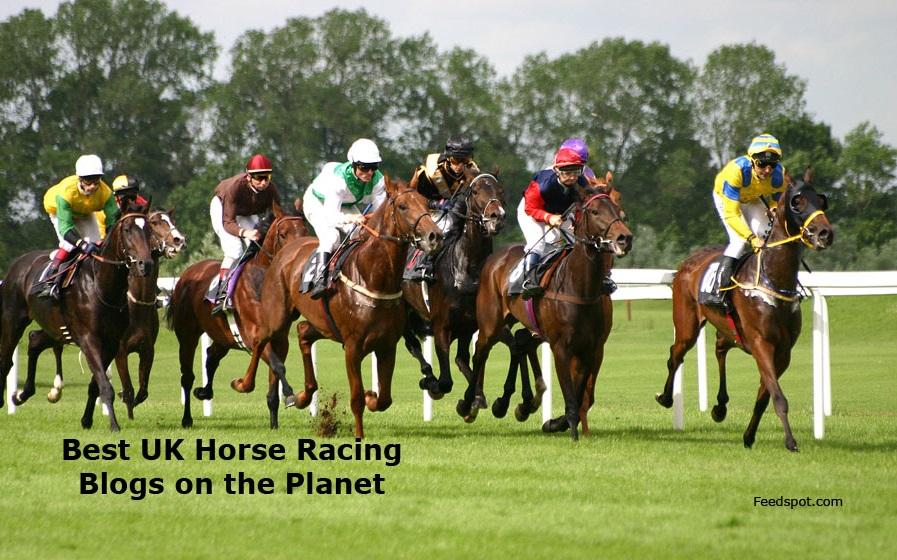 Horse Racing Blogs
