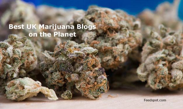 Top 5 UK Marijuana Blogs and Websites To Follow in 2018