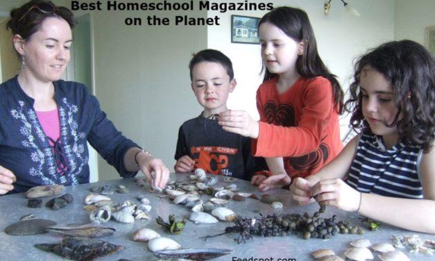Top 5 Homeschool Magazines And Ezines To Follow