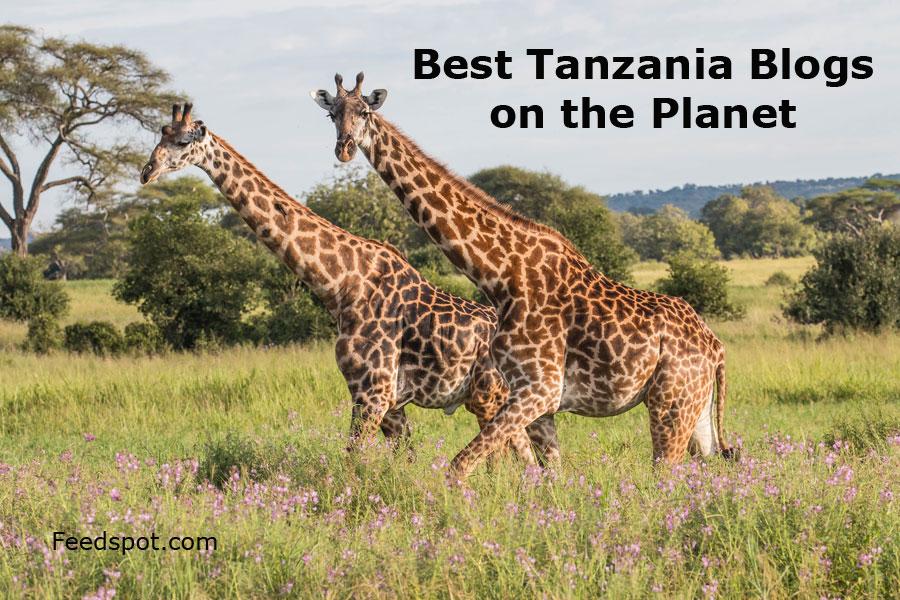 Top 25 Tanzania Blogs, News Websites & Newsletters To Follow